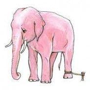 El misterio del elefante