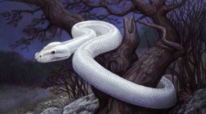 serpiente-blanca