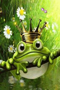 la-rana-y-el-principe1